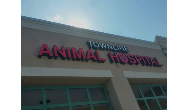 LED lighted channel letters for animal hospital in Vernon Hills, IL